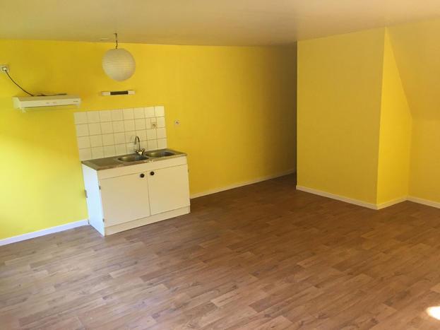 location appartement 53200