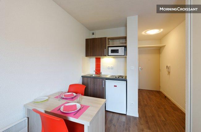 location appartement ile de nantes